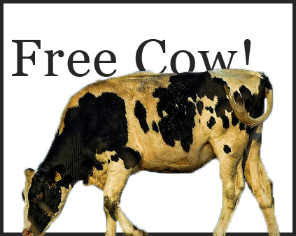 Free Cow!