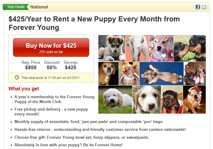 Yelp National: Puppy Rentals